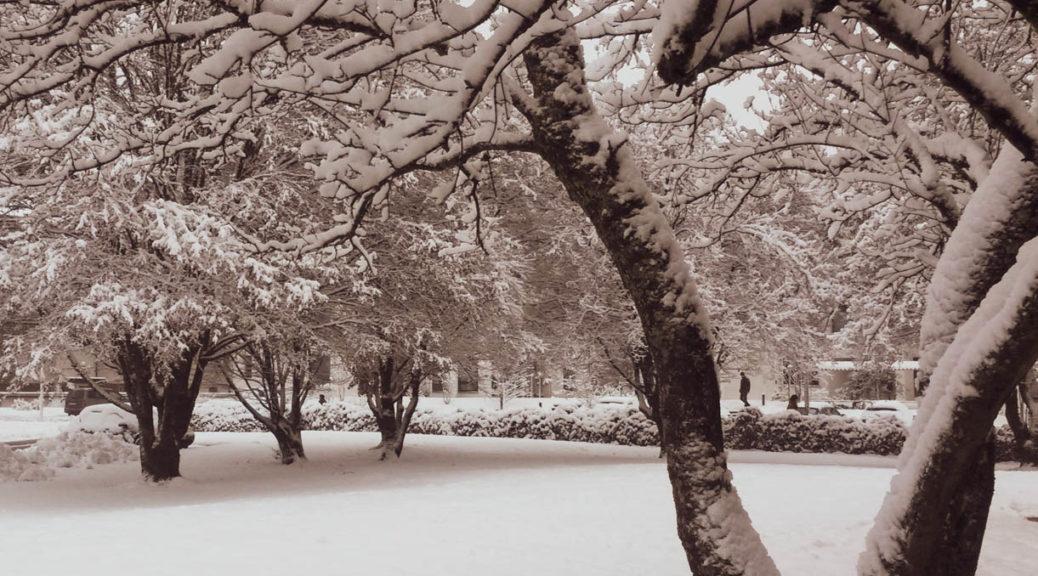 Kalendarischer und meteorologischer Winteranfang - das ist der Unterschied
